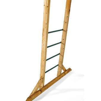 Plum Free Standing Monkey Bars